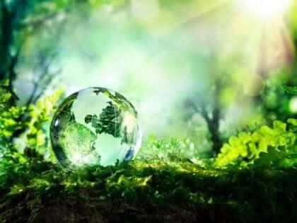 Il globo terrestre su un tappeto di foglie.