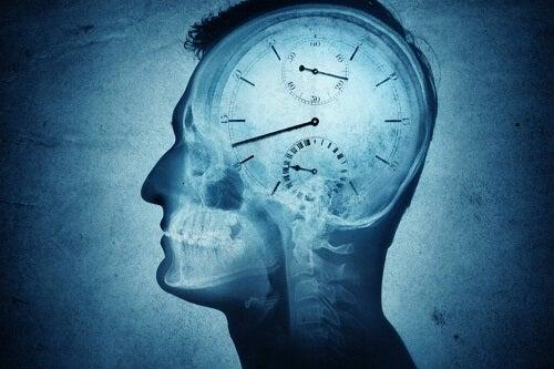 Cronobiologia: cos'è e come influisce?