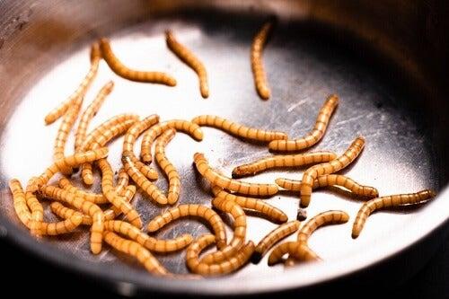Vermifobia: la paura dei vermi