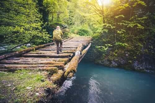 Un viaggiatore attraversa un ponte su un fiume.