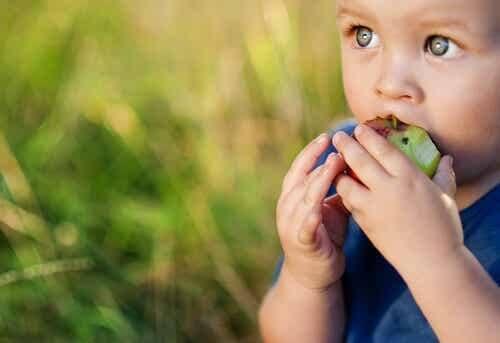 Bambino che mangia una mela.