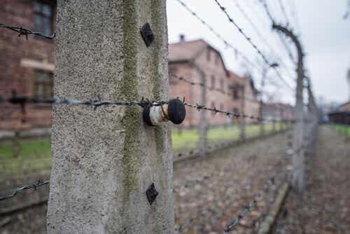 Filo spinato in un centro di concentramento.