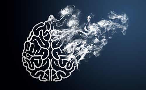 Il cervello in fumo e la pigrizia.