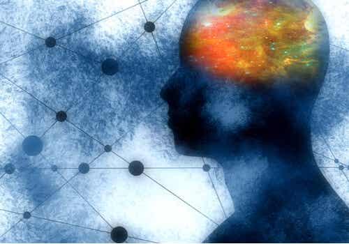 Cervello di persona introversa.