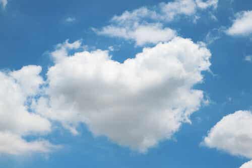 La simbolizzazione delle esperienze in una nuvola.