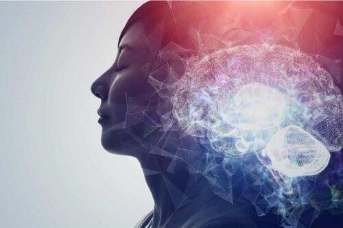 Meccanismi cerebrali delle pseudoallucinazioni.