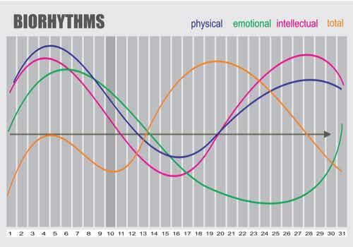 Bioritmi e ritmi circadiani.