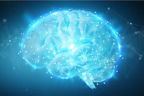 Attività cerebrale.