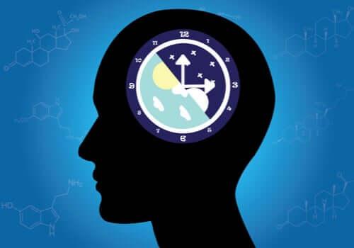 I ritmi circadiani: cosa sono e come funzionano?
