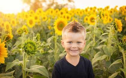 Bambino in un campo di girasoli.