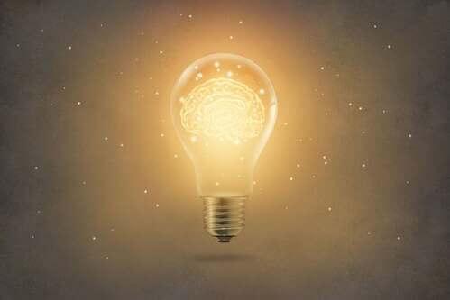 Apprendimento per insight, in cosa consiste?