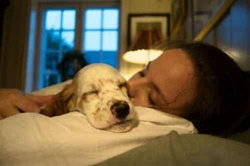 Dormire col proprio animale per stare bene