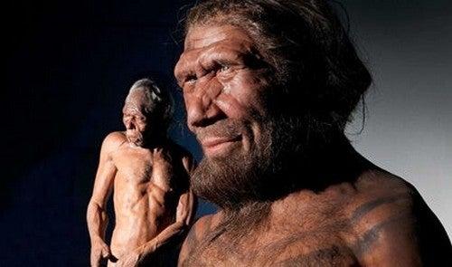 I Neanderthal provavano compassione, lo dimostrano i reperti